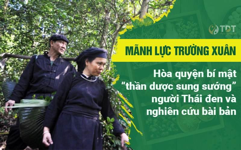 Bài thuốc Mãnh lực Trường xuân có nguồn gốc từ dân tộc Thái Đen