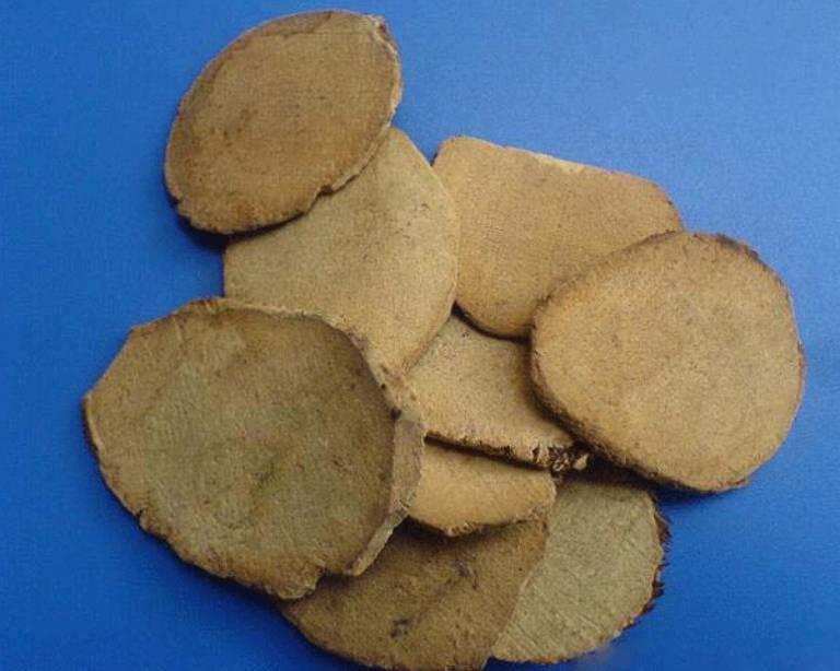 Tam lăng là vị thuốc nam quý được dùng nhiều trong y học cổ truyền