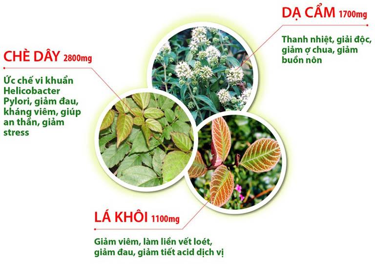 Dược liệu sử dụng trong bài thuốc