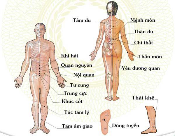 vị trí huyệt đạo châm cứu chữa xương khớp
