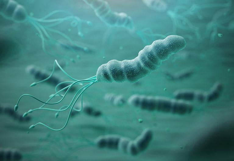 âm tính với vi khuẩn hp