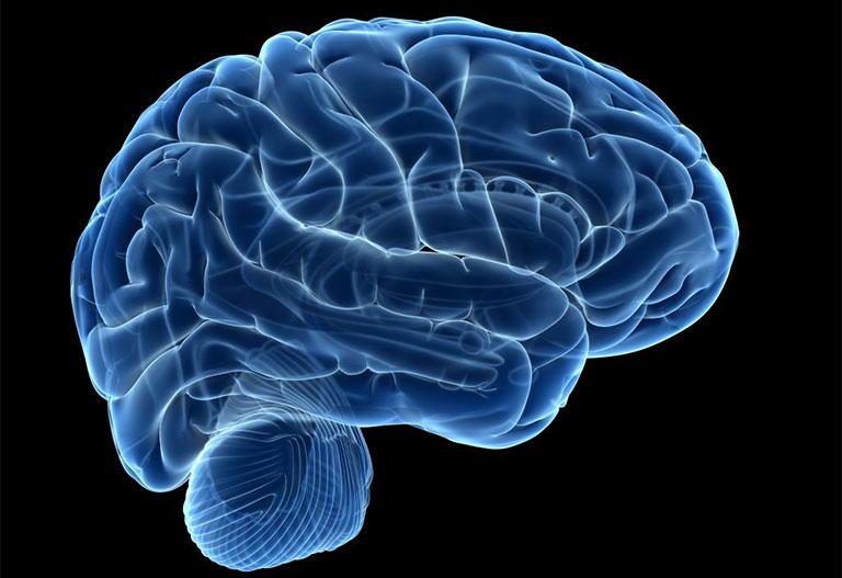 tình dục buổi sáng giúp não hoạt động tốt hơn