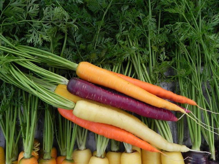 Lợi ích của cà rốt
