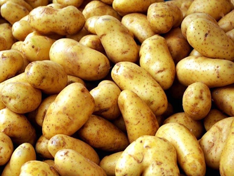 củ khoai tây có tác dụng gì