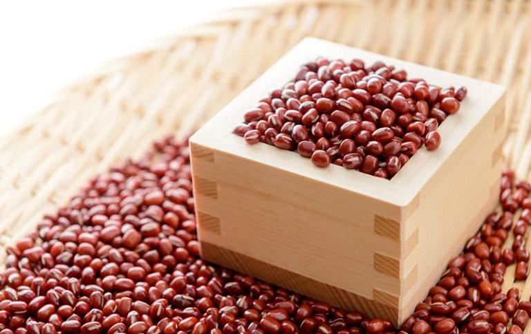 cây đậu đỏ