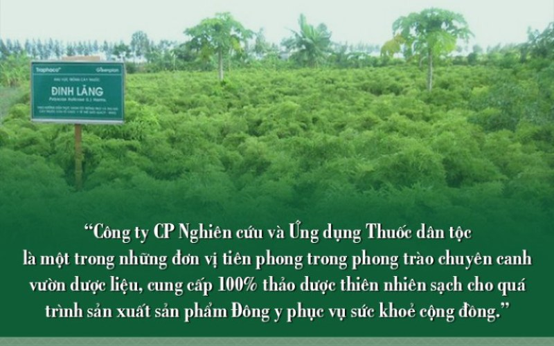Vườn thuốc sạch của Thuốc dân tộc