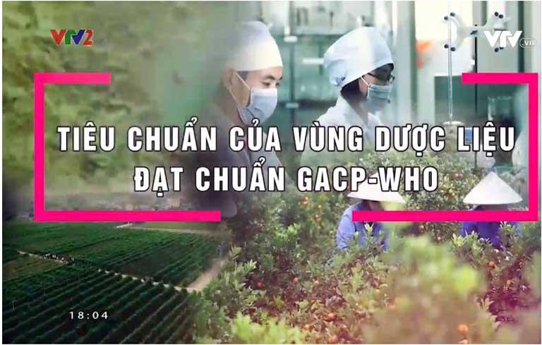 VTV2 giới thiệu vườn dược liệu sạch