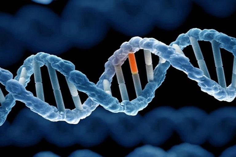 Bệnh vảy nến di truyền không