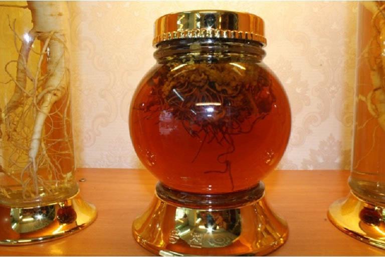 Đông trùng hạ thảo ngâm mật ong chữa yếu sinh lý