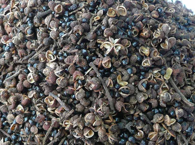 hạt mắc khén (hạt sẻn)