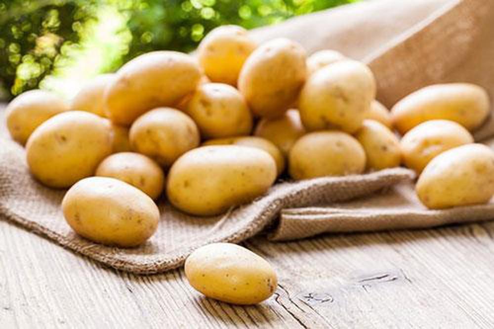 bệnh gút nên ăn khoai tây