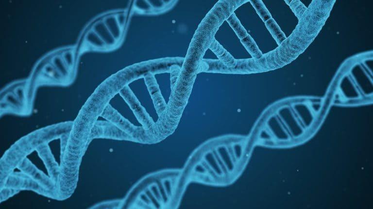 hói đầu di truyền có chữa được không