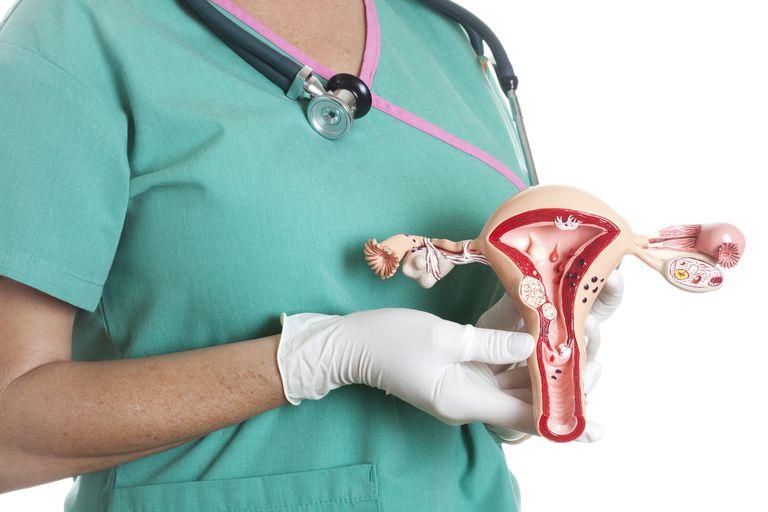u xơ tử cung thường gặp ở độ tuổi nào?