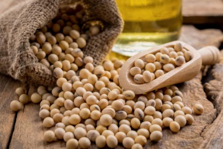 U xơ tử cung có nên uống sữa đậu nành không?