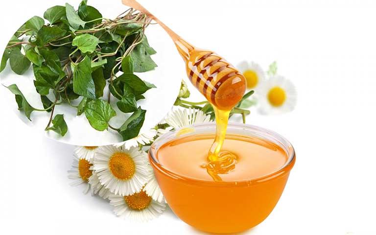 Cách trị viêm xoang bằng rau diếp cá và mật ong
