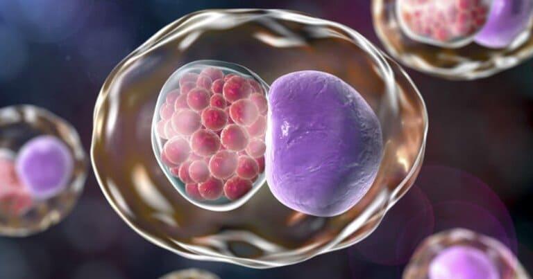 Nhiễm chlamydia khi mang thai có nguy hiểm không?