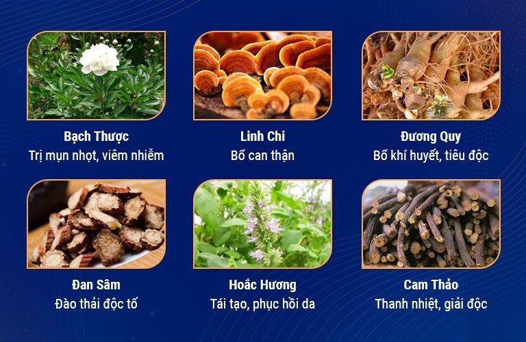Một số loại thảo dược thiên nhiên được sử dụng trong phương pháp trị da nhiễm độc Corticoid của TTDLĐYVN