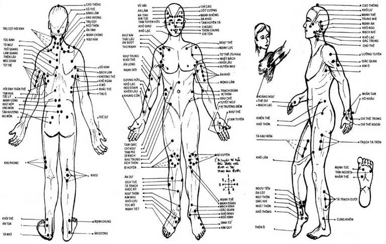 Đề tài của BS Vân Anh là cơ sở để phát triển các phương pháp chữa bệnh dựa trên huyệt mạch của cơ thể