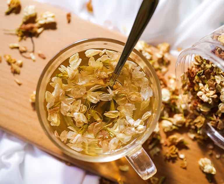 uống trà hoa nhài dễ ngủ