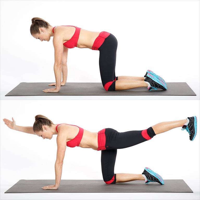 bài tập thể dục chữa đau lưng tư thế Chim - Chó