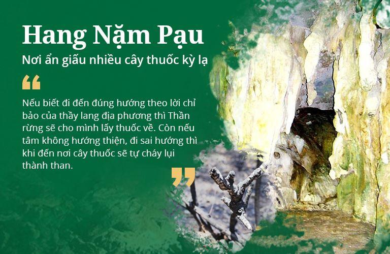 Câu chuyện thần rừng giữ thuốc quý tại hang Nặm Pạu