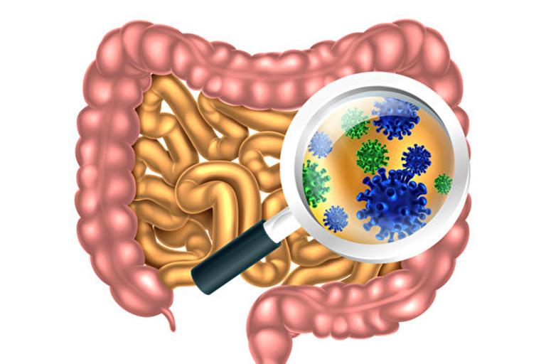 rối loạn vi khuẩn đường ruột