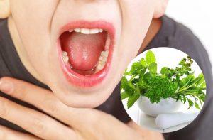 chữa viêm VA cho bé bằng thuốc nam
