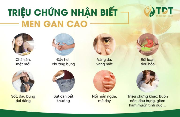 Một số triệu chứng điển hình của người mắc men gan cao