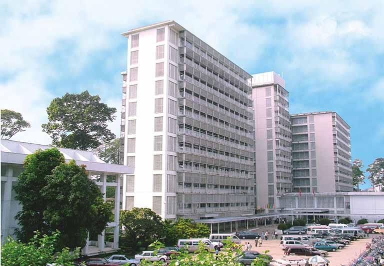 Siêu âm gan nhiễm mỡ ở bệnh viện Chợ Rẫy